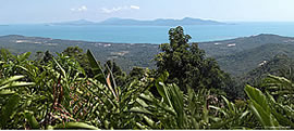 land seen from maenam hill top koh samui